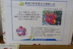 env_photo-20120629-03