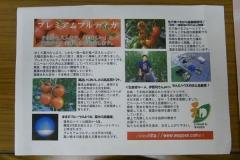 env_photo-20121212-10